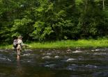 Jamaica (VT) : Fly Fishing at Jamaica State Park