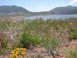 Eagle Nest Lake (NM) : Lakeview